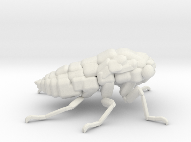 Cicada! The Somewhat Smaller Square-ish Sculpture in White Natural Versatile Plastic