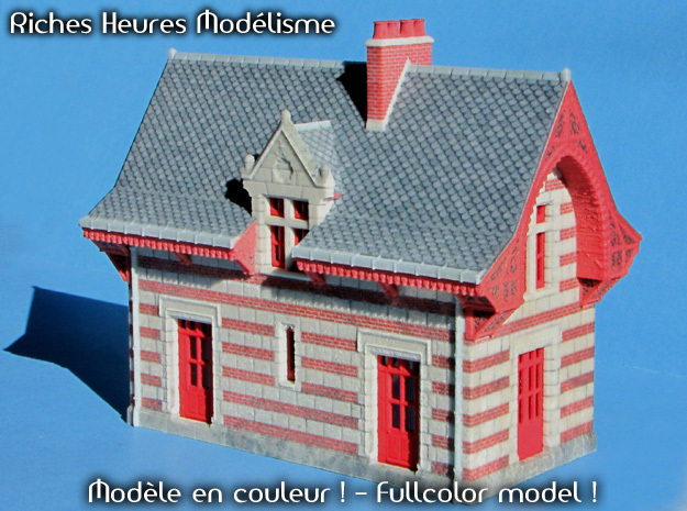 C-TTgBsc01-Busseau-sur-Creuse-Hall in Glossy Full Color Sandstone