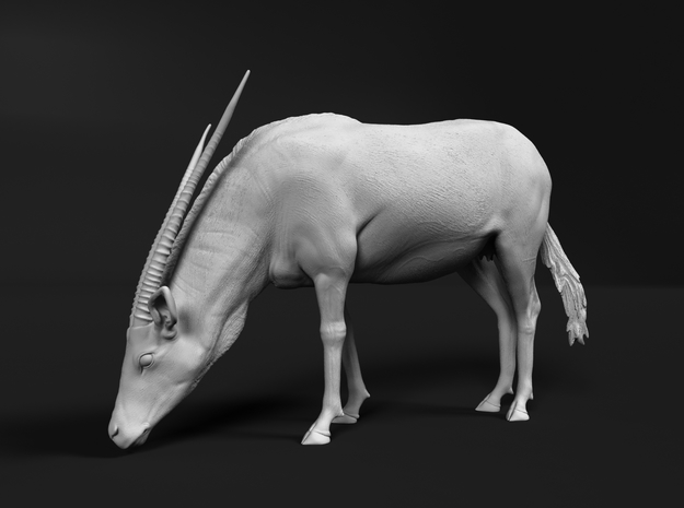 Gemsbok 1:25 Drinking Female in White Natural Versatile Plastic