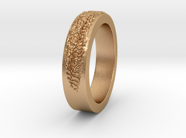 IMPRINT 5 mendelheit Ring Size 8 in Natural Bronze