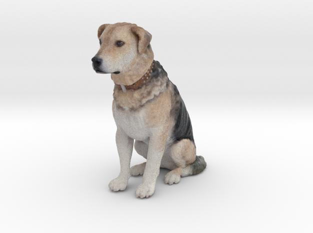 Dog / Chien de la Rue / 96mm / art.#MK002 in Natural Full Color Sandstone
