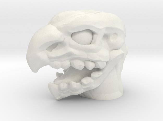 Rotbeak Head (Multisize) in White Natural Versatile Plastic: Medium