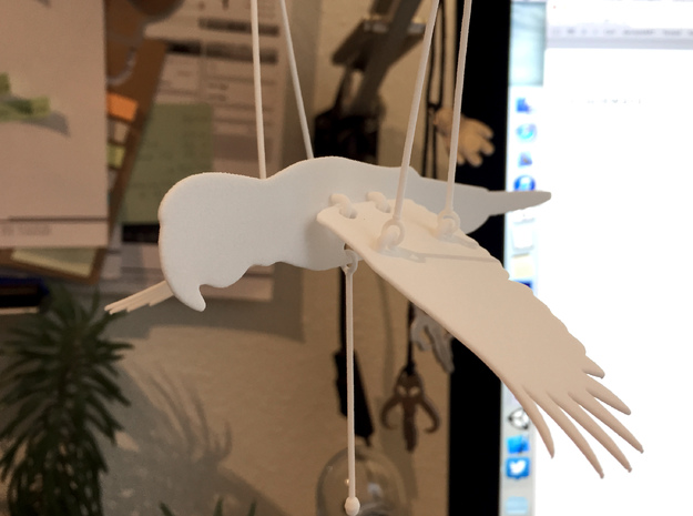 Flying Macaw in White Natural Versatile Plastic