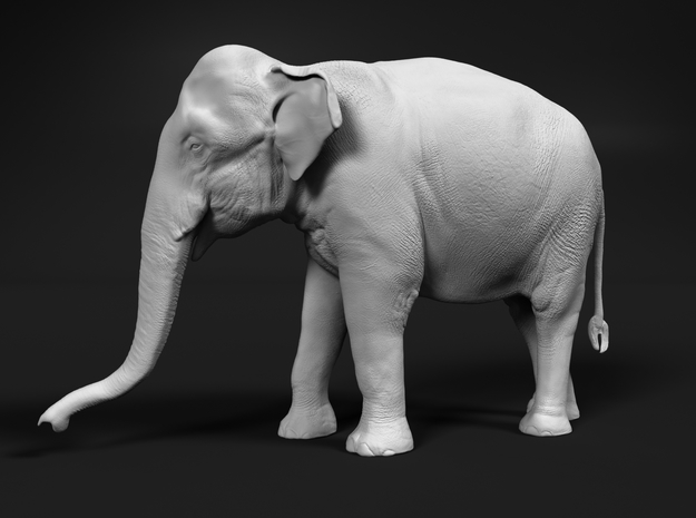 Indian Elephant 1:48 Standing Female 1 in White Natural Versatile Plastic