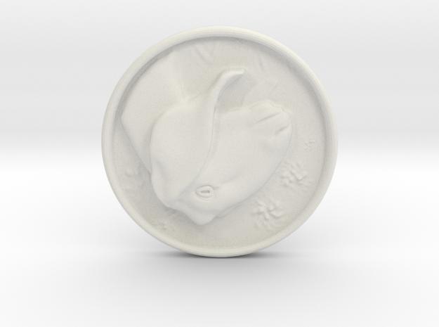Nubian Doe Coin in White Natural Versatile Plastic