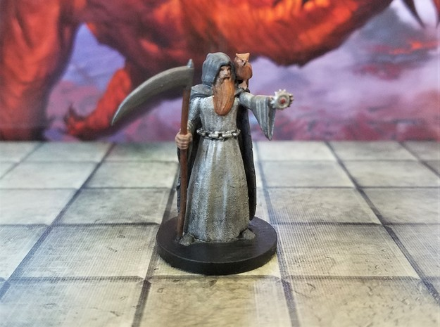 Human Death Cleric with Owl Familiar in Smooth Fine Detail Plastic