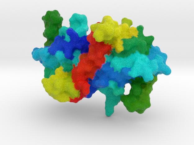 CoVID-19 NSP9 Replicase in Natural Full Color Sandstone