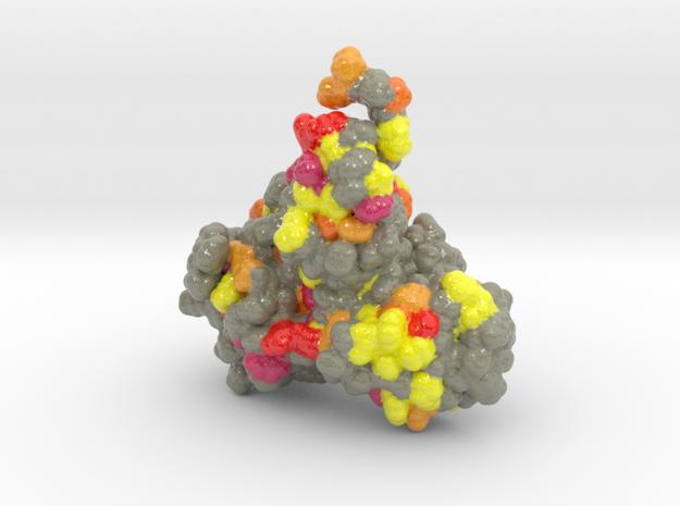 COVID_19_nsp4 in Glossy Full Color Sandstone