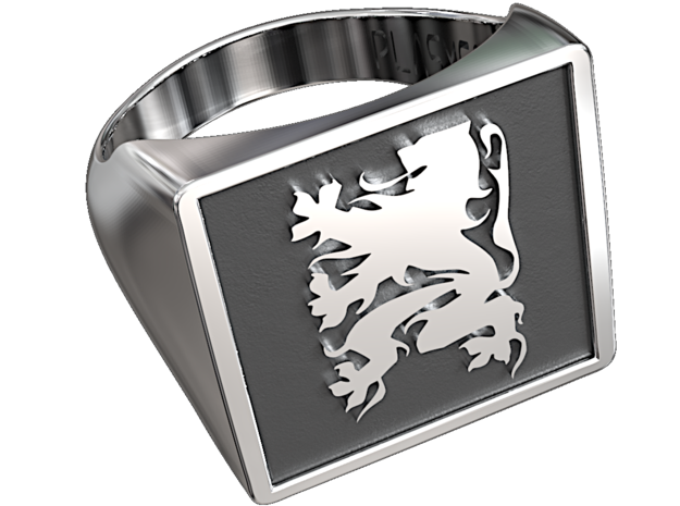 Flanders Lion square ring in Antique Silver