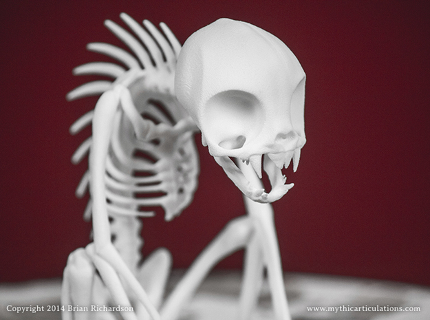 Chupacabra Skeleton 3d printed