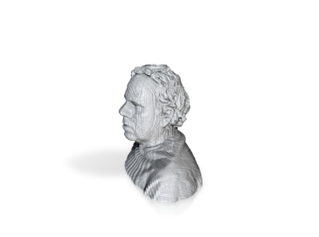 Self Portrait 3d scan 3d printed