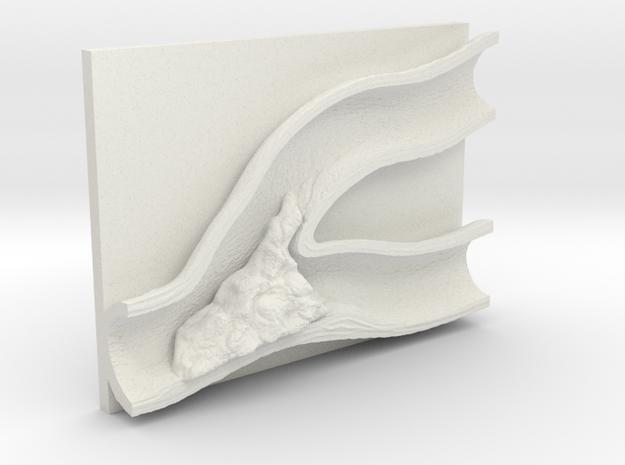 plaque in vessel in White Natural Versatile Plastic: Large