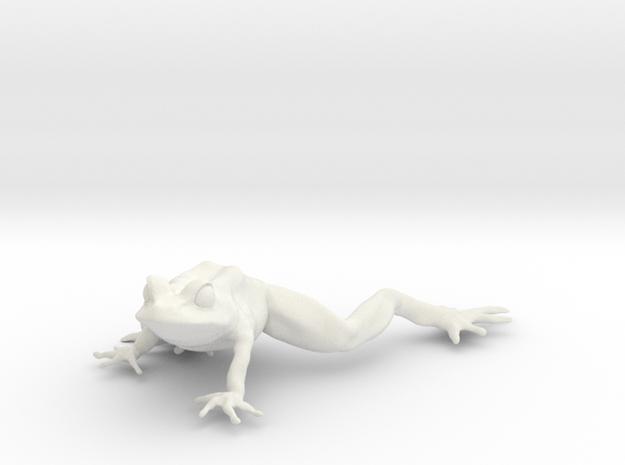 12.9 cm frog in White Natural Versatile Plastic