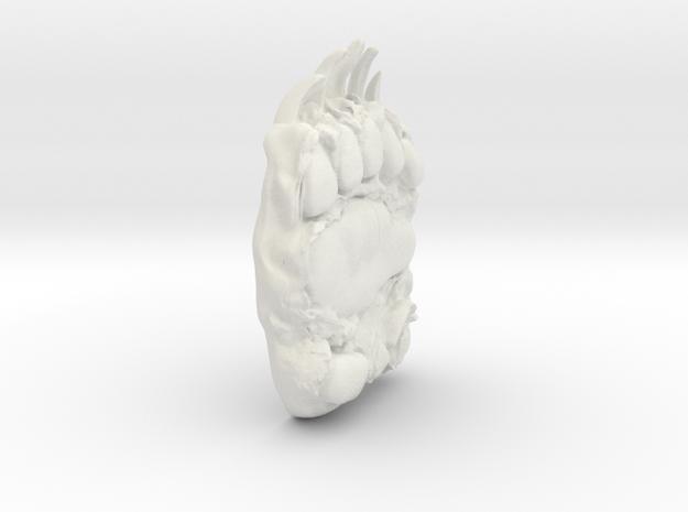 bear paw in White Natural Versatile Plastic