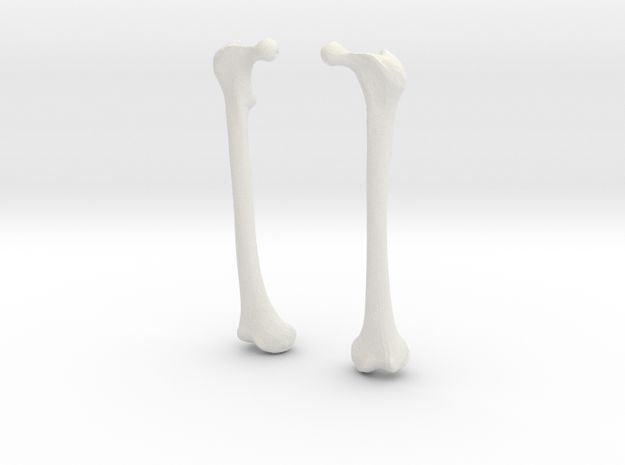 Femur Earrings 3d printed