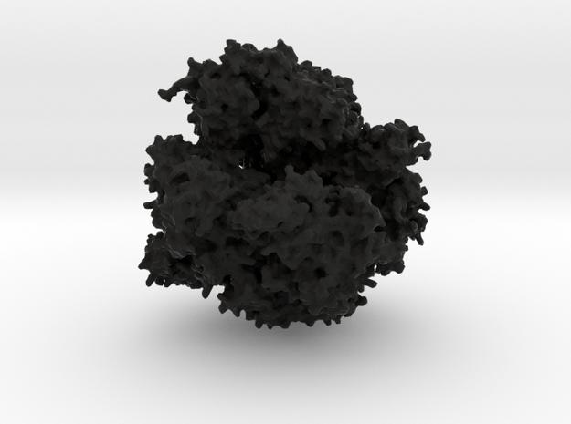 RNA Polymerase - Surface Render 3d printed