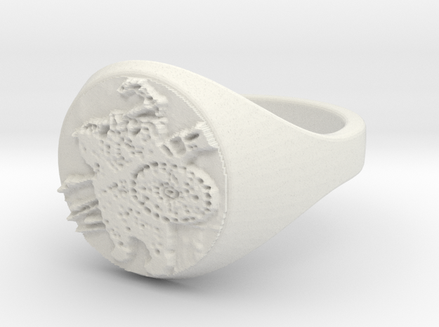 ring -- Sat, 30 Nov 2013 02:00:26 +0100 3d printed