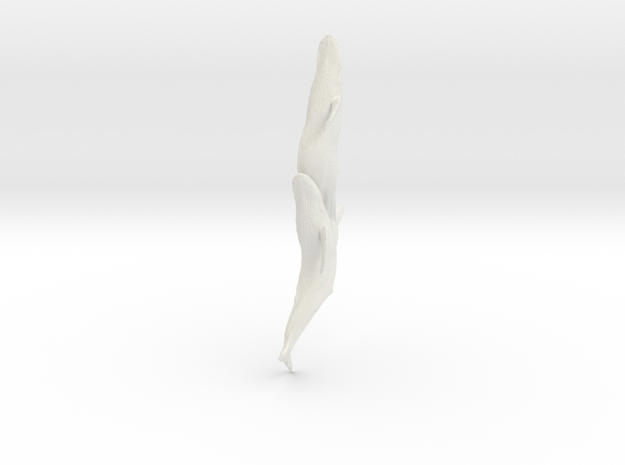 Whale Pin in White Natural Versatile Plastic