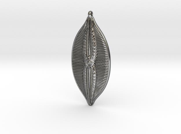 Navicula bullata Pendant ~ 46mm tall (1.8 inches)