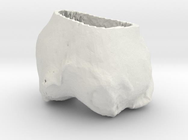 june knee in White Natural Versatile Plastic