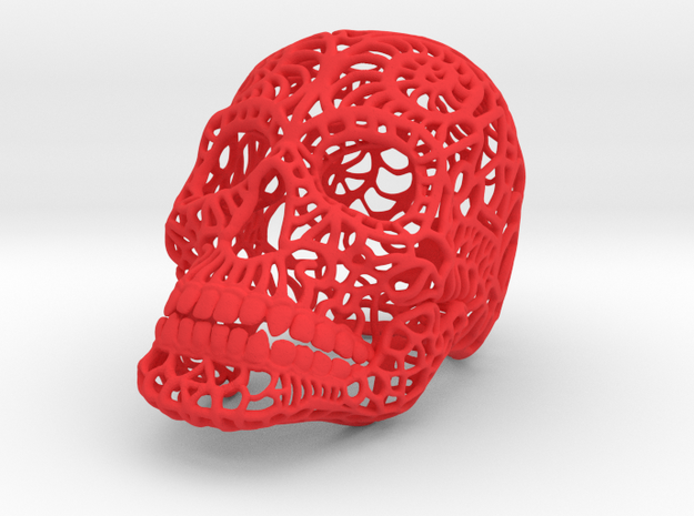 Nautilus Sugar Skull - Large 3d printed