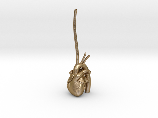 Anatomical Heart Ring Holder 3d printed