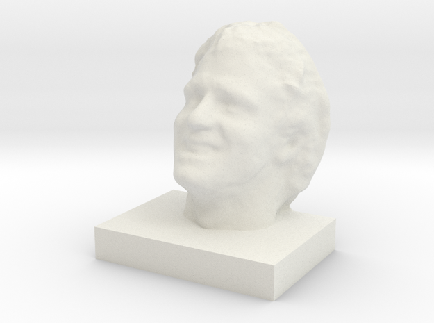 """Face Scan - 3.5"""" 3d printed"""