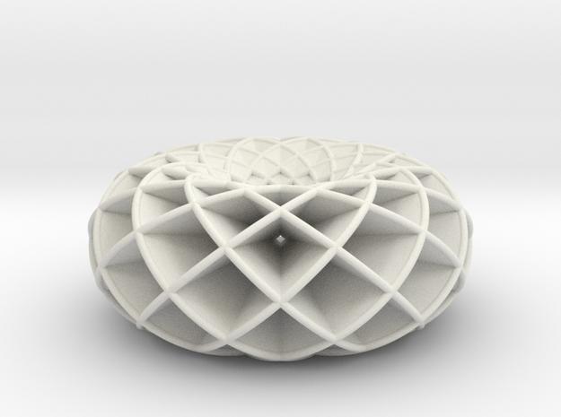 torus circles in White Natural Versatile Plastic