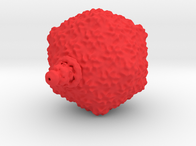 T7 bacteriophage 1M x magnification 3d printed