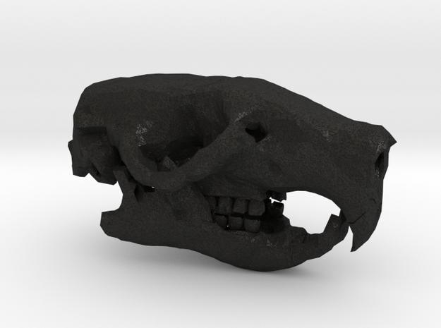 Rat Skull 3d printed