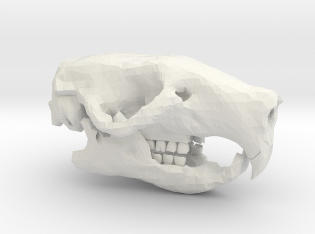 Rat Skull in White Natural Versatile Plastic