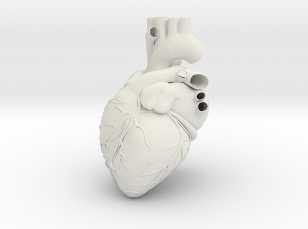 FINAL SHAPEWAYS REAL HEART (repaired) 3d printed