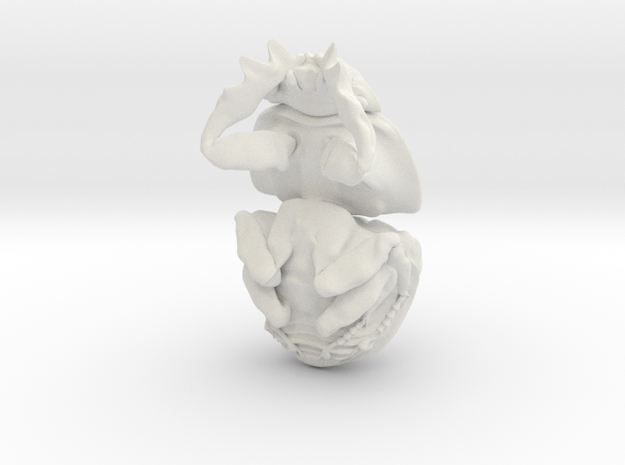 Dung Beetle Pendant 2.9cm - style 1 - Circellium b 3d printed