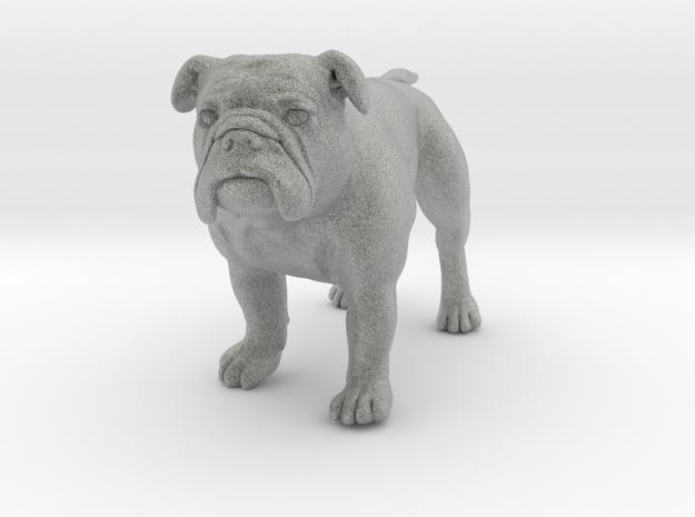 Bulldog S Full Color Sandstone 3d printed