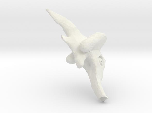evolutionFish_8 3d printed
