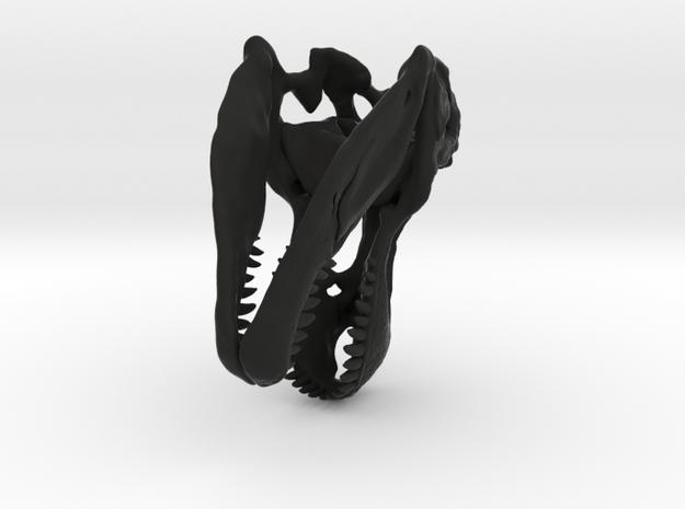 T Rex Skull 1:20  3d printed