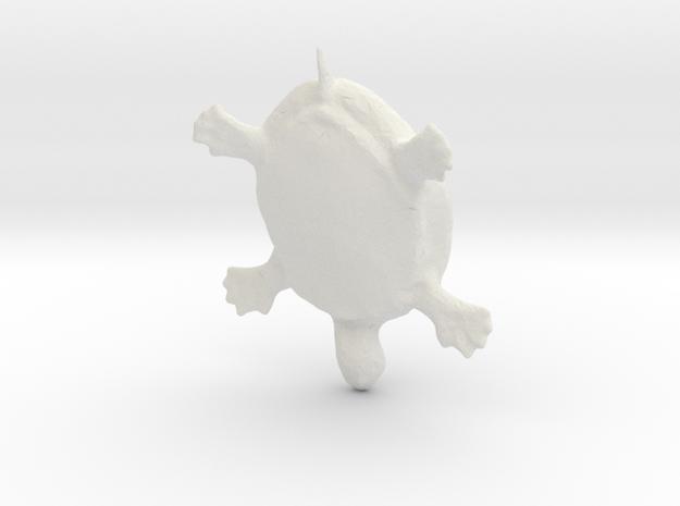 Testudines / Chelonia (Turtle) 3d printed