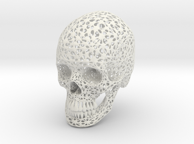 Lace Skull, Full Size in White Natural Versatile Plastic