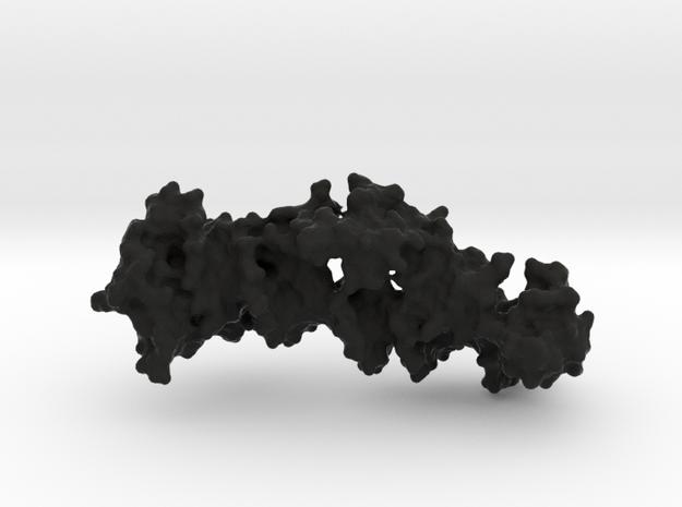 Zinc Finger DNA 3d printed