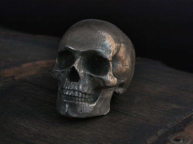 Yorick Full Skull with Latin Inscription in Polished Bronzed Silver Steel