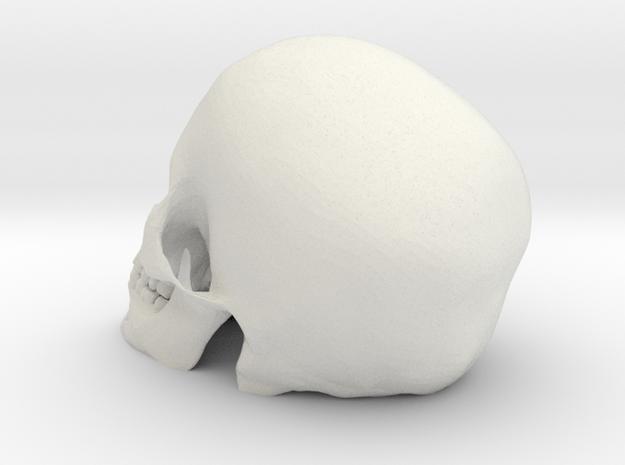 Skull  in White Strong & Flexible