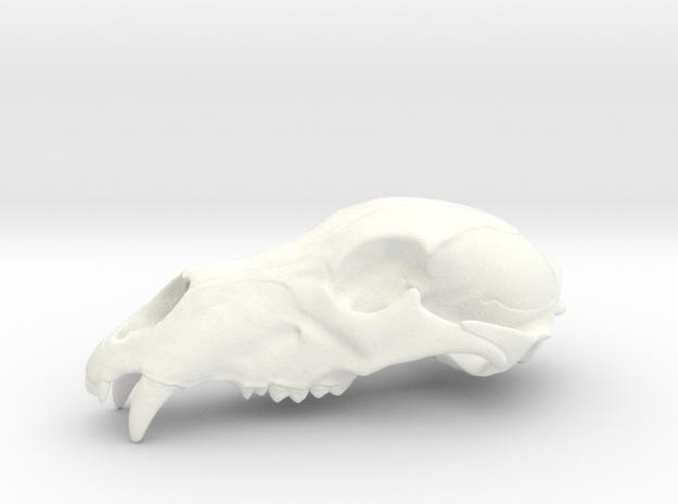 Bear Skull. WT-07. 6cm.