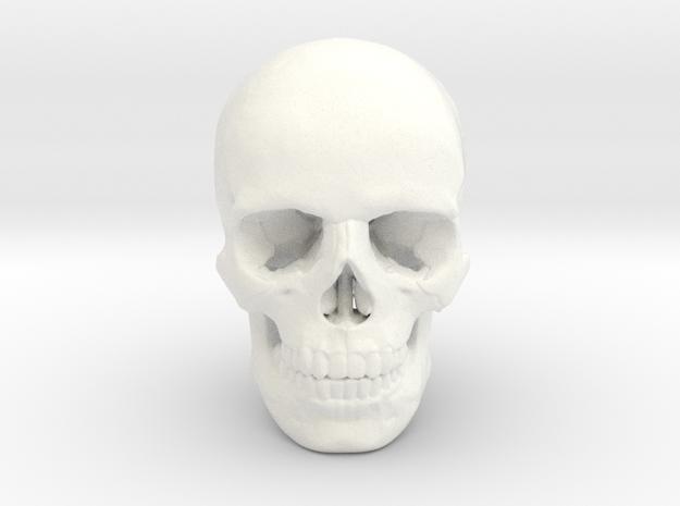 25mm 1in Human Skull Crane Schädel че́реп