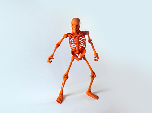 Articulated Skeleton  in Orange Processed Versatile Plastic