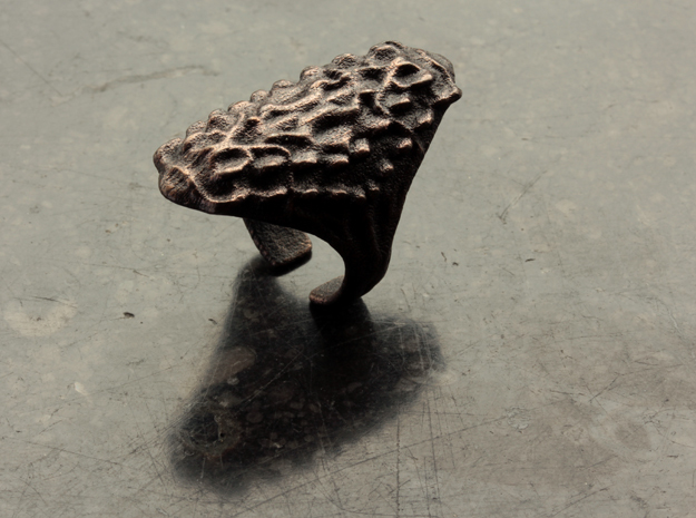 Crusta Ring in Polished and Bronzed Black Steel