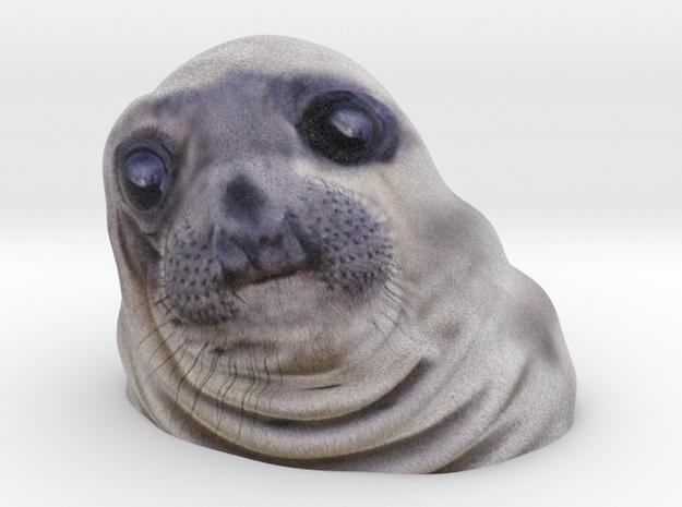 Awkward Moment Seal (LXXS83MUA) by EricHo