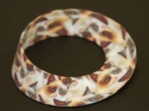 Grumpy Cat Mobius Strip (Infinite Grumpiness)
