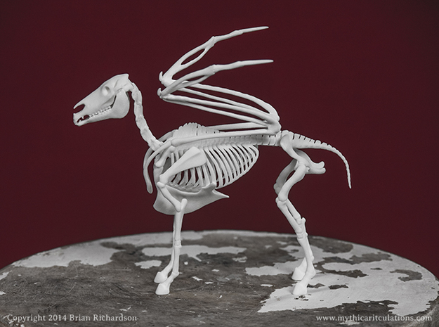 Pegasus Skeleton in White Strong & Flexible