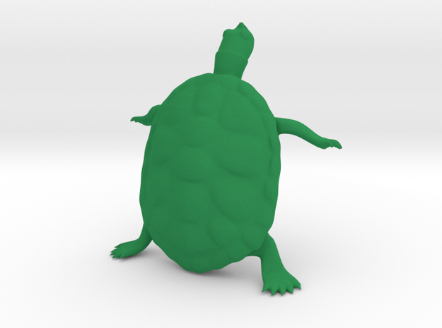 The Wondering Turtle in Green Strong & Flexible Polished