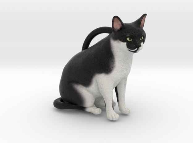 Custom Cat Ornament - Chocolate